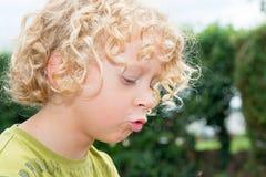 小男孩画象有白肤金发和卷发的 图库摄影