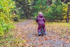 小男孩获得在自行车的乐趣在秋天森林选择聚焦 免版税库存图片