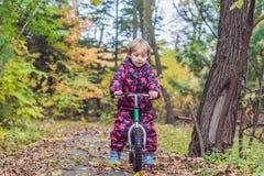 小男孩获得在自行车的乐趣在秋天森林选择聚焦 库存图片