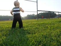 小男孩观看的体育 图库摄影