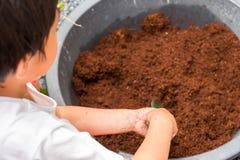 小男孩铲起对混杂的土壤,准备种植树 免版税库存照片
