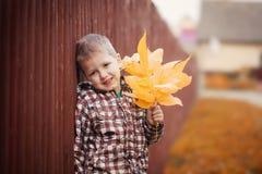 小男孩画象有黄色槭树的离开 图库摄影