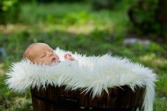 小男婴,睡觉在与白色毛皮的篮子 免版税图库摄影