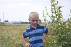 小白肤金发的男孩纵向在大花附近的 免版税图库摄影