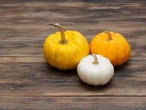 小白色、中等黄色和大橙色南瓜在小组投入了在黑暗的木背景 免版税库存照片