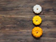 小白色、中等黄色和大橙色南瓜垂直在黑暗的木背景投入了 免版税库存照片