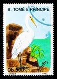 小白鹭(白鹭属garzetta),鸟serie,大约1993年 免版税库存图片