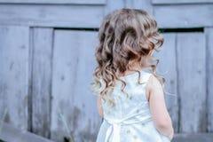 小的公主礼服 库存图片
