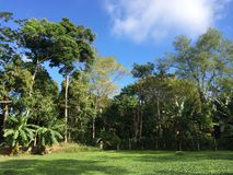 小的农场在里约热内卢 图库摄影