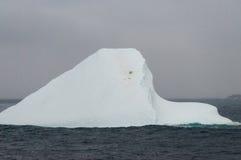 小的冰山 免版税库存图片
