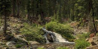 更小的国王Creek Falls在登上拉森国家公园 免版税库存图片
