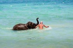 小的大象小牛在有人的海游泳 库存图片