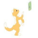 小的姜小猫 免版税库存照片