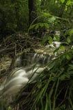 小的小瀑布,河Toplica,达鲁瓦尔,克罗地亚 免版税库存照片