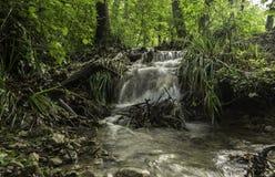 小的小瀑布,河Toplica,达鲁瓦尔,克罗地亚 库存照片