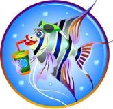 小的小鱼 免版税库存照片