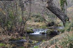 小的山河 库存图片