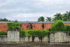 小的庭院 免版税库存图片
