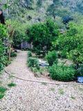 小的村庄 库存图片