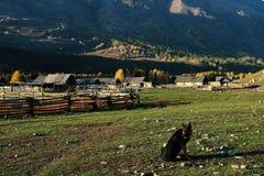 小的村庄 免版税库存照片