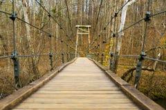 小的桥梁 免版税库存照片