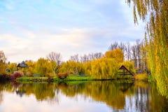 小的池塘在公园 免版税库存照片