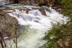 小的河,田纳西的水槽 免版税库存照片