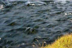 小的河 库存照片