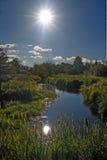 小的河 库存图片