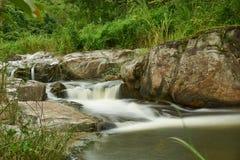 小的瀑布在热带雨林里 免版税库存照片