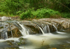 小的瀑布在热带雨林里 库存照片