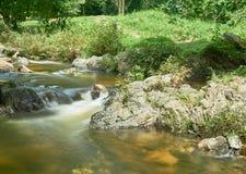 小的瀑布在热带雨林里 免版税库存图片