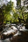 小的瀑布在Monasterio de Piedra 免版税库存照片