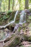 小的瀑布小瀑布在森林Krushuna,保加利亚8里 免版税库存照片