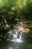 小的瀑布小瀑布在森林Krushuna,保加利亚Po里 免版税库存图片