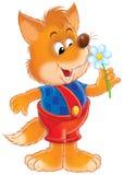 小的狐狸 免版税库存照片