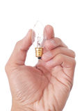 小的电灯泡 库存图片