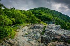 小的石人峭壁,在Shenandoah国家公园,弗吉尼亚 库存照片
