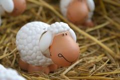 小的羊羔 库存图片