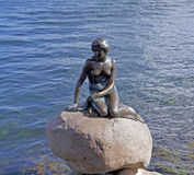 小的美人鱼古铜雕象在哥本哈根,丹麦 免版税库存照片