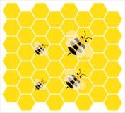 小的蜂,少许蜂蜜 库存图片