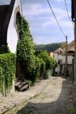 小的街道在匈牙利城镇 库存图片
