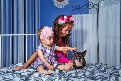 小的逗人喜爱的姐妹和狮身人面象猫 库存照片