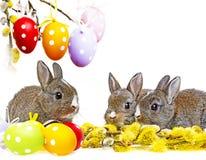 小的逗人喜爱的小兔子和被绘的复活节彩蛋 免版税库存图片