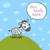 小的逗人喜爱的斑马在草甸 库存照片