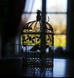 小的鸟的剪影在一只笼子的在窗口的背景与帷幕的 免版税库存图片
