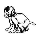 小的猴子Cub 免版税库存照片