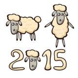 小的绵羊 免版税库存照片