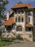 小的château 库存照片
