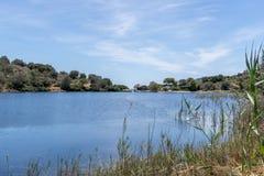 小盐水湖在希腊 免版税图库摄影
